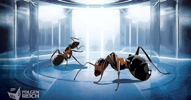 Imperium der Ameisen