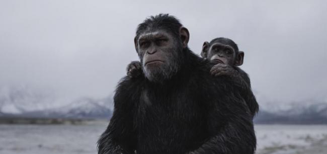 Caesar mit seinem Sohn Cornelius in Planet der Affen: Survival