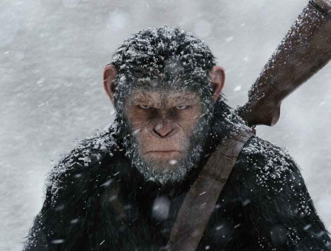 Teaser-Poster zu Planet der Affen: Survival