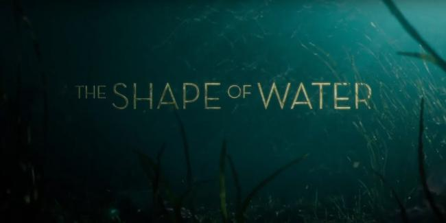 Shape of Water Logo