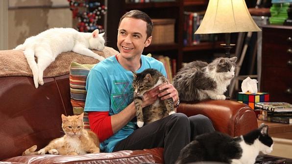 The Big Bang Theory Sheldon Cooper