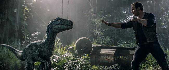 Chris Pratt als Owen mit Blue in Jurassic World 2