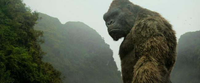 Der Affe Kong in Kong Skull Island