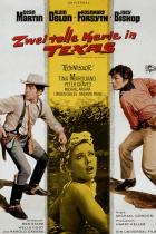 Zwei tolle Kerle in Texas Filmposter