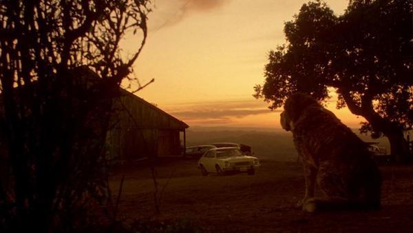 Szenenbild aus der Verfilmung zu Stephen Kings Cujo