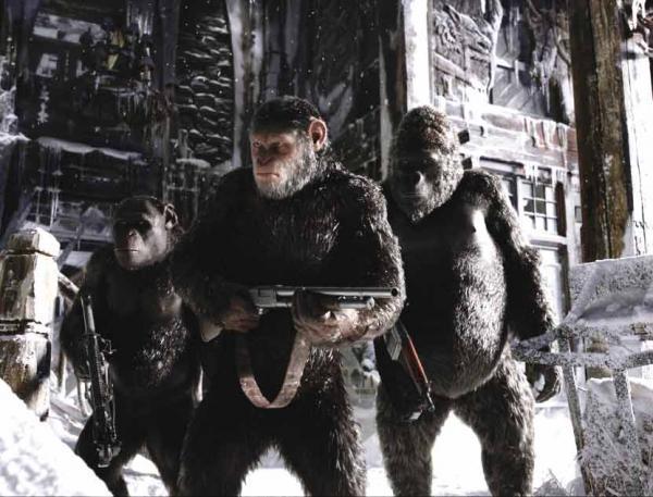 Planet der Affen: Survival - Szenenbild