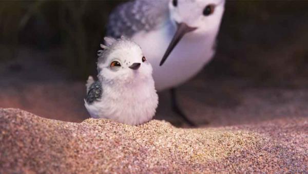 """Szenenbild aus dem Pixar-Kurzfilm \""""Piper\"""", der vor """"Findet Dorie"""" zu sehen ist"""