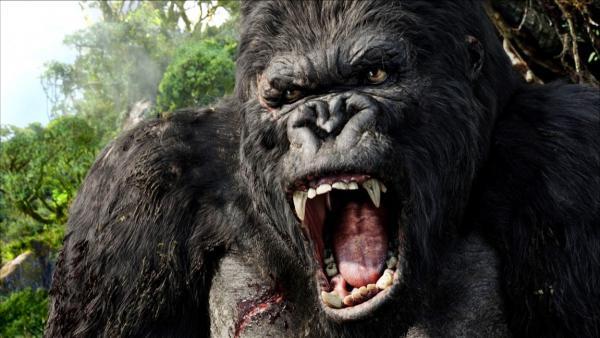brüllender King Kong