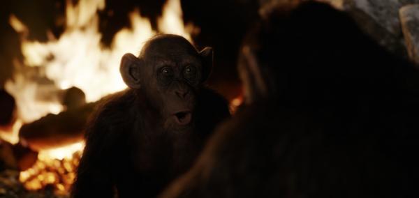 Steve Zahn als Bad Ape in Planet der Affen: Survival