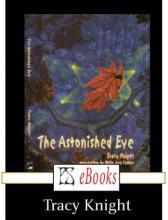 The Astonished Eye, Tracy Knight, Rezension