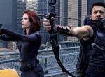 Avengers Hawkeye & Black Widow