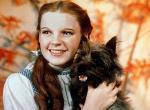Der Zauberer von Oz: Neuverfilmung aus Sicht des Hundes geplant