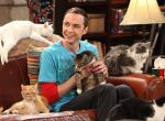 Big Bang Theory: Spin-off Young Sheldon geht in Serie